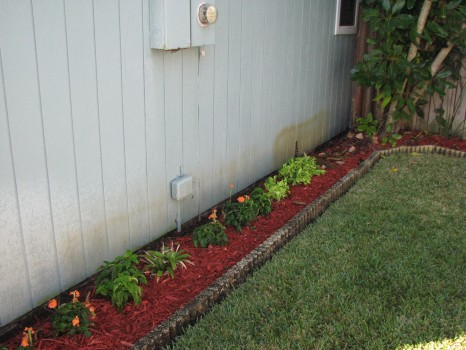 Merritt Island - Rotten Wood Siding Repair