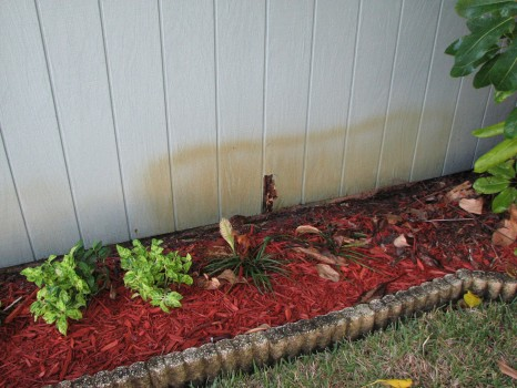 Merritt Island - Wood Rot - Wood Siding Repair