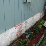 Merritt Island - Wood Siding Repair Cutout