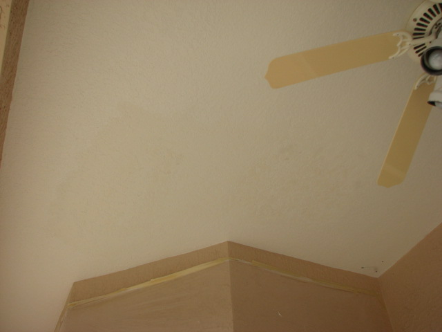 Knockdown Textured Ceiling Bubbling While Painting Lanai