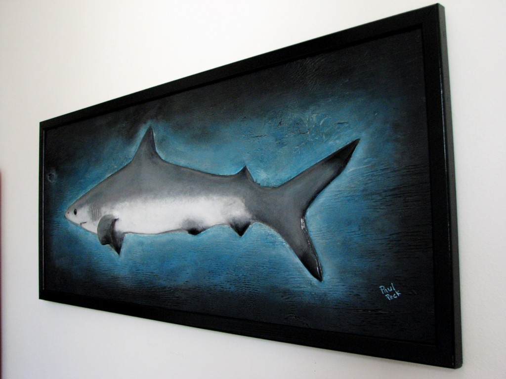 Hand painted, backed and framed shark sculpture